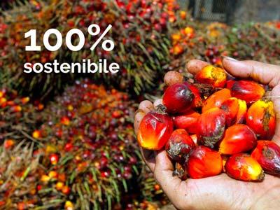 olio di palma coltivazione sostenibile