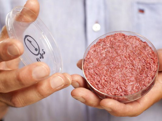 Allarme cibo: cosa mangeremo nel futuro? Ecco i 5 cibi che troveremo sulle nostre tavole