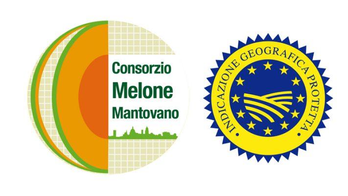 Come scegliere il Melone Mantovano IGP: tutto quello che devi sapere