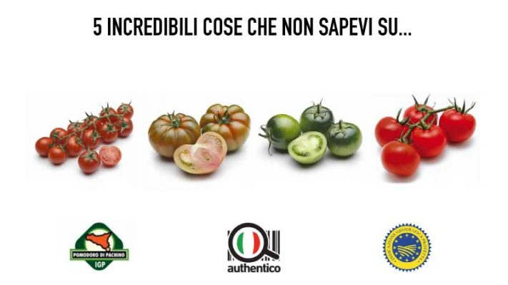 5 incredibili cose che non sapevi sul Pomodoro di Pachino