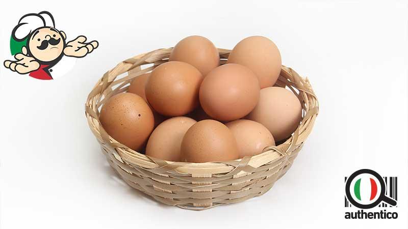 uova gallina di allevamento a terra