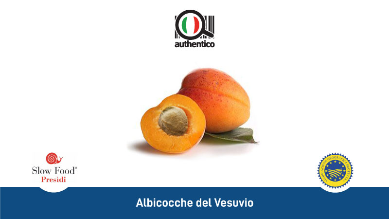 ALBICOCCHE DEL VESUVIO CRISOMMOLE